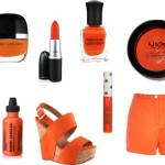 Celosia Orange Spring Summer 2014 Colour Trend